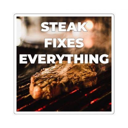 Steak Fixes Everything Sticker